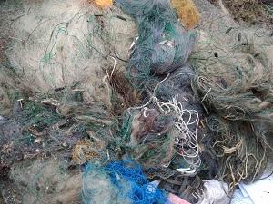 Закарпатський рибпатруль здійснив утилізацію заборонених знарядь лову